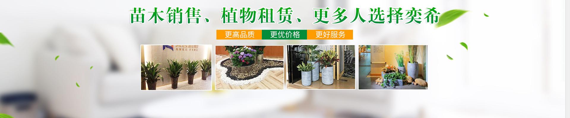 湖南奕希花卉园林有限责任公司_长沙花卉租赁|专业花卉租赁企业|盆栽花木销售|室外园林绿化